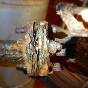 Live Leak Seal Chiller Line Repair 16.JPG